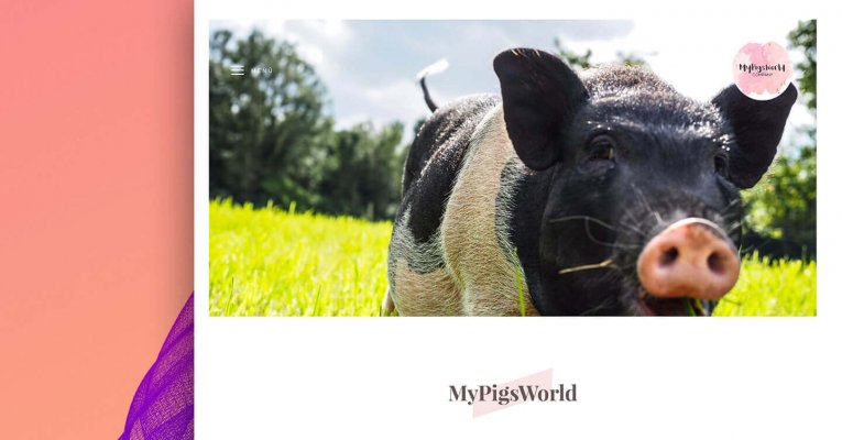 MyPigs­World